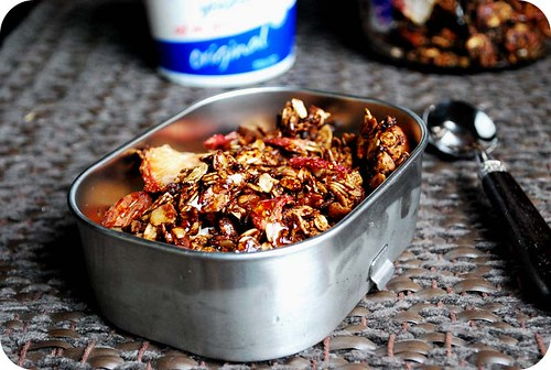 Chocolate Granola with Dried Strawberries