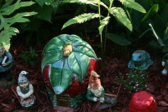 Strawberry Gnome Home