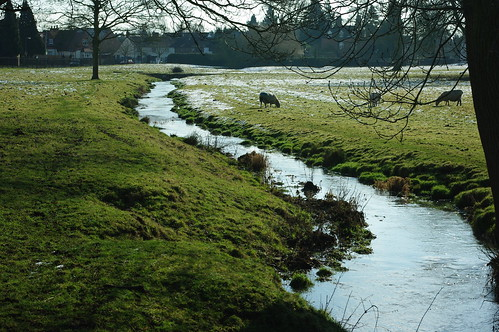 20100220-26_Stream through Wolston Pasture by gary.hadden