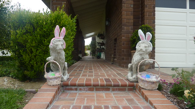 bunnylions