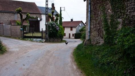 Hamlet in France