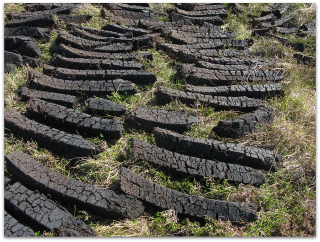 Peat for fuel drying in the sun
