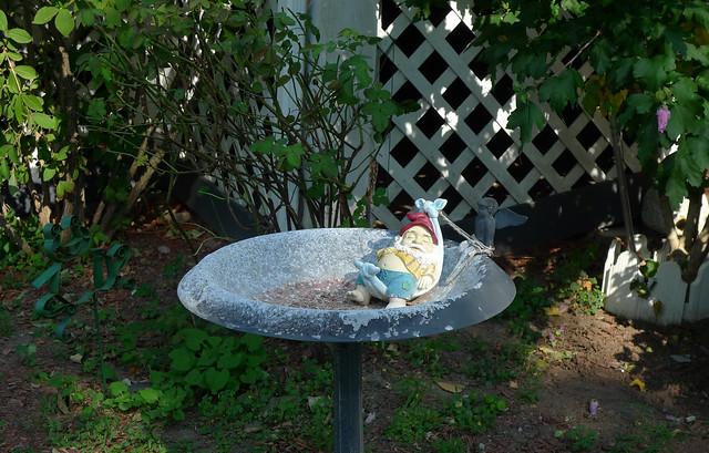 Sleeping Gnome
