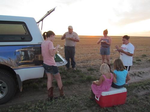 Supper in the field.