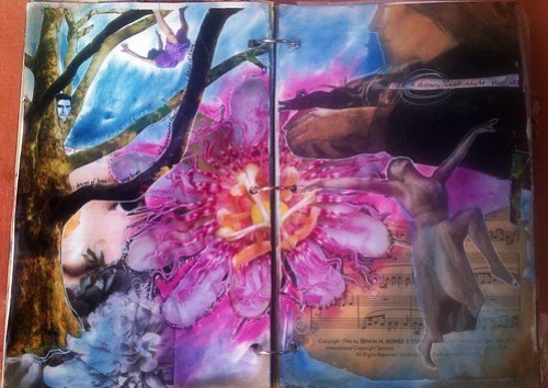 Dream by Stephanie Thiel