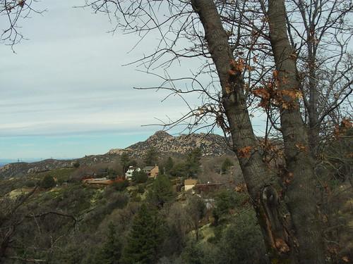 Oak Trees Framing the Pinnacles