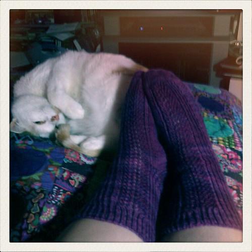 A sleepy sue and my new socks...