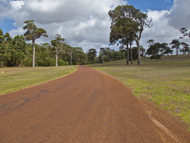 The drivway to the Leeuwin Estate Winery