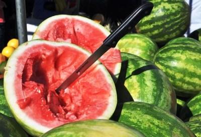 Dec8-Watermelon