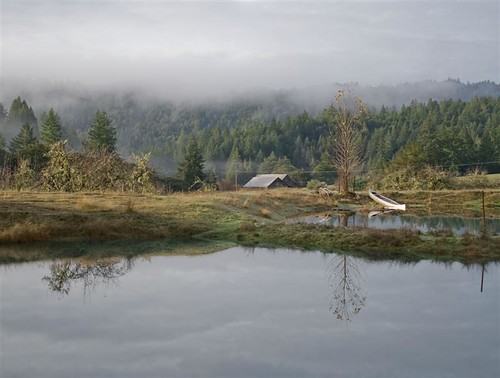 Mirror Pond (Medium)