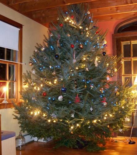 decoratedtree
