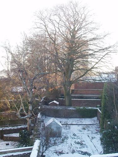 201012250191_no16-garden