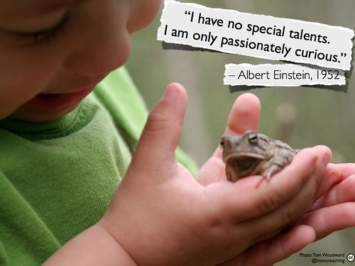 I am only passionately curious
