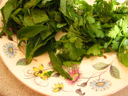 mint and coriander