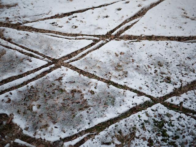 snowy desire lines