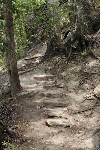 McKinney Falls stepping stones