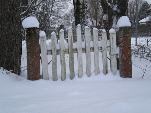 going nowhere gate