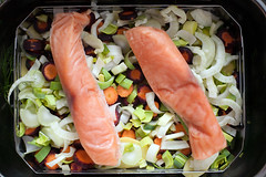 salmon on vegetables I