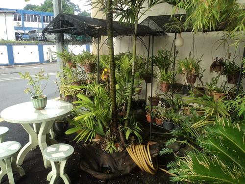 Dónde dormir y alojamiento en Melaka (Malasia) - Yellow Mansion Hostel.