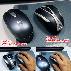マウスの大きさ比較