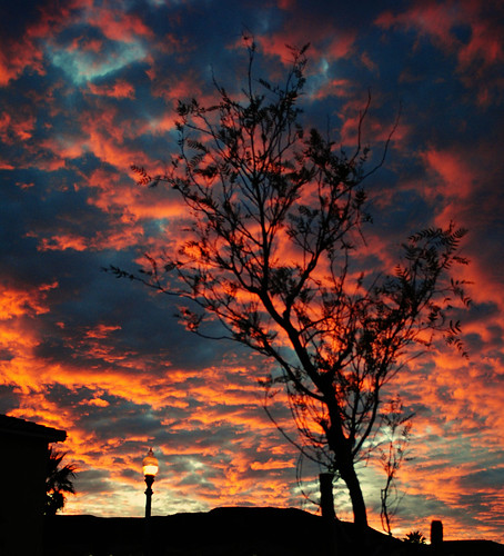 DSC_0170_edited-1 by aloha.jolene