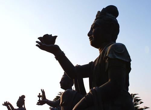 Lotus Ladies of Lantau