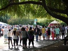 Pasifika Crowds