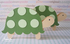 Turtle mini cards