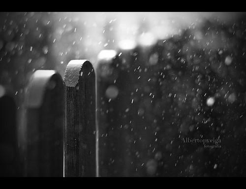 (77/365) Lluvia by albertopveiga