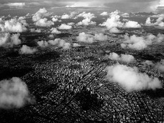 Small Curitiba (318 Years Old) In Black & White.