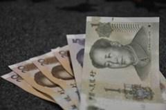 Money (55/365)