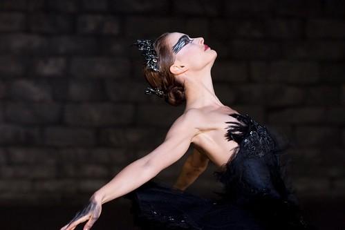 Black Swan 1