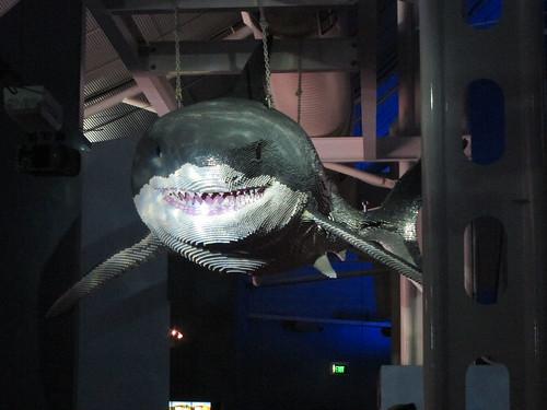 Lego great white shark
