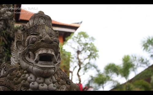 Bali 24.02.2011 - 1