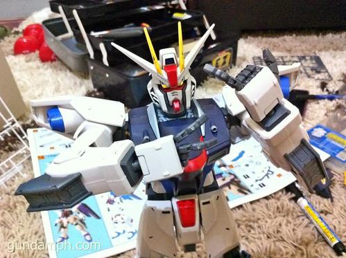 Building 1/60 Freedom Gundam