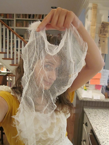 behind the veil of cheesecloth