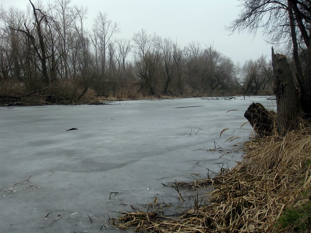 Frozen pond near Zelčin