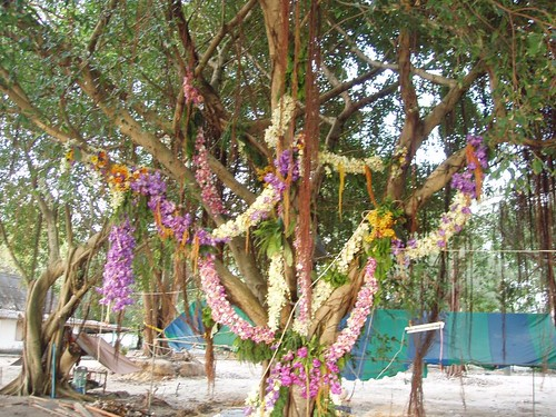 201103190230_funeral-flowers