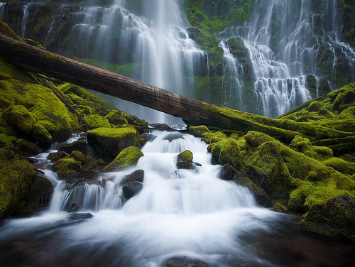 Proxy Falls by Sheldon Nalos