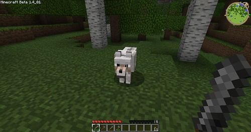 Minecraft - Hello Wolfie!