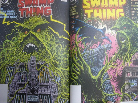 swamp pic 5