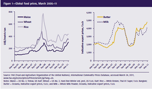 FAO graphics on global food prices, March 2005-11
