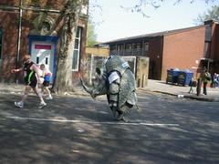 London Marathon Rhino