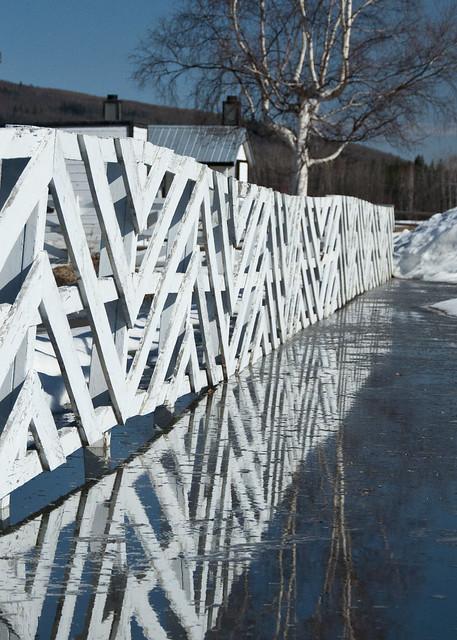 Fence Reflection