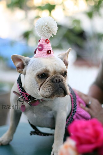 Birthday Girl in Her Hat