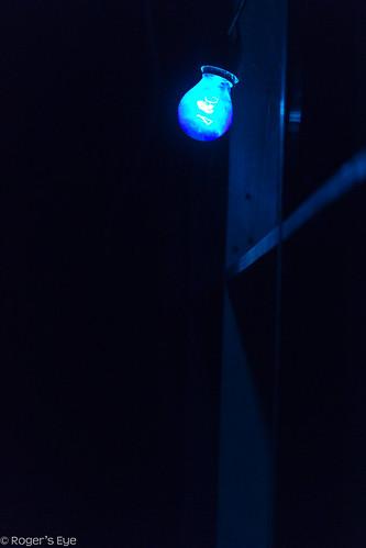Feeling a little Blue by Roger's Eye