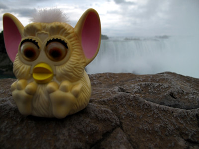 Furby at Niagara Falls