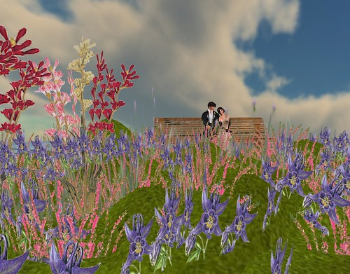 Two Moon Studios PEACEFUL PASSIONS - COMPLETE GARDEN