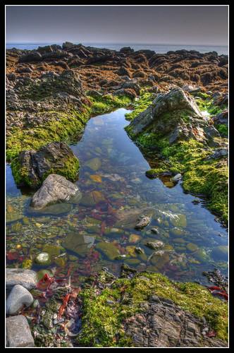 Onchan Rock Pool, Isle of Man by jonny.andrews65