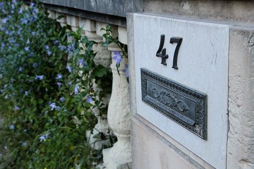 47-&-Flowers
